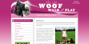 Leipzig Webdesign Beispiel - York Dog Walking Service